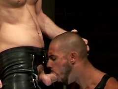 "Edward Fox gets the hot Ivan Rueda and shows him what ""Deepthroat"" means. Deeper and deeper he ..."
