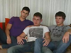 Trio of studs interviewing and then sucking
